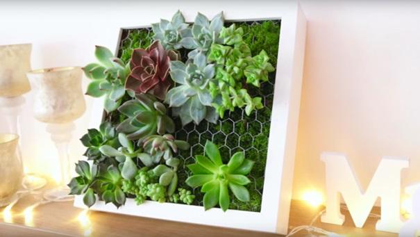 decoration végétal